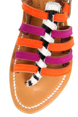 Homere Zebra, Orange/Pink