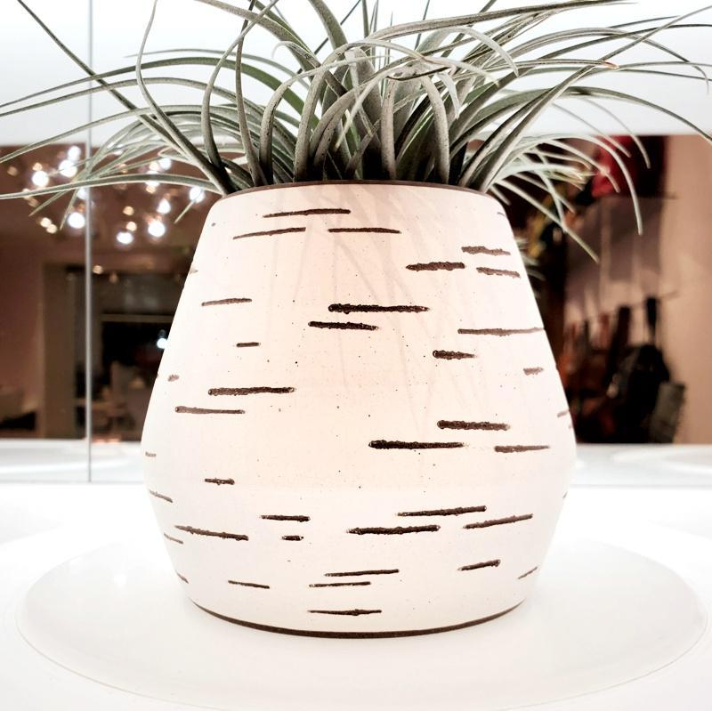 Birch Vase - White Short Wide Tapered by Justin Caraco Ceramics