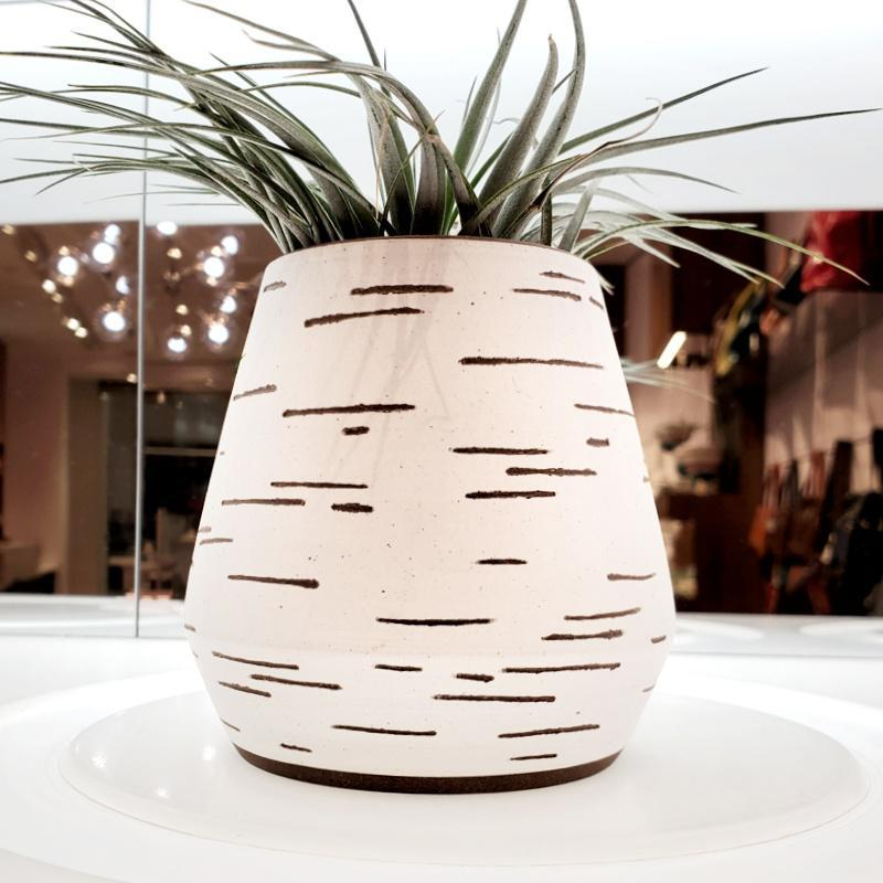 Birch Vase - White Narrow Tapered by Justin Caraco Ceramics