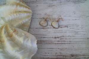 Two cockle shell gold earrings