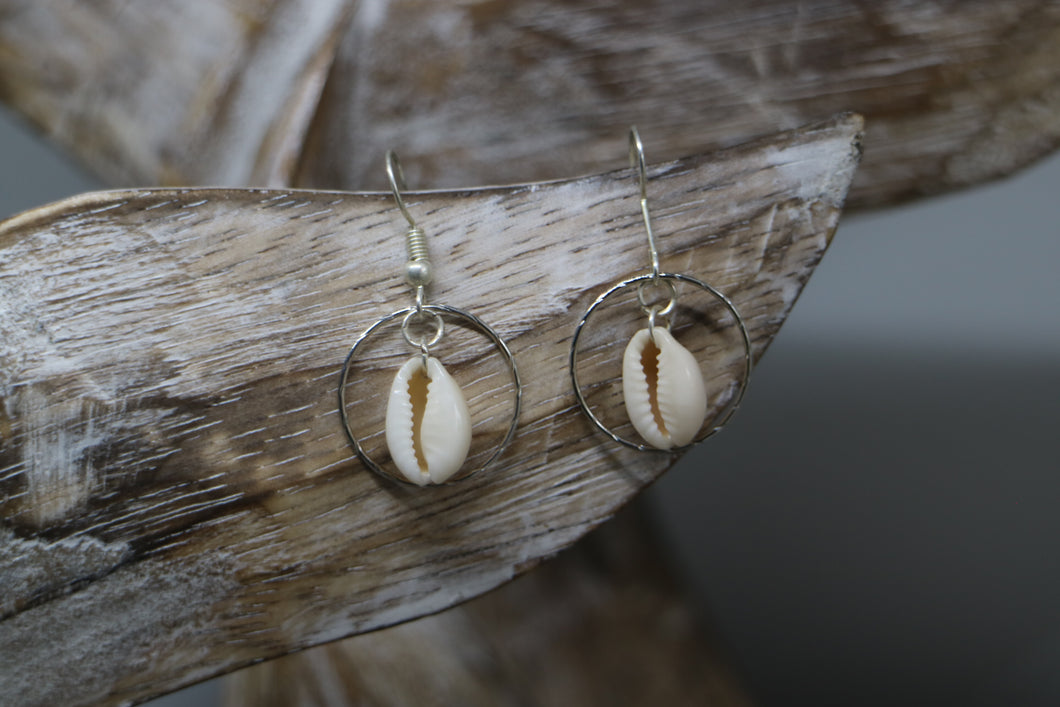White cowrie sea shell sterling silver earrings