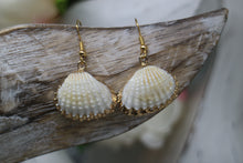Load image into Gallery viewer, Two cockle shell gold earrings