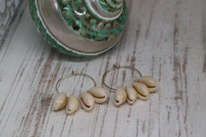 White cowrie shell silver earrings
