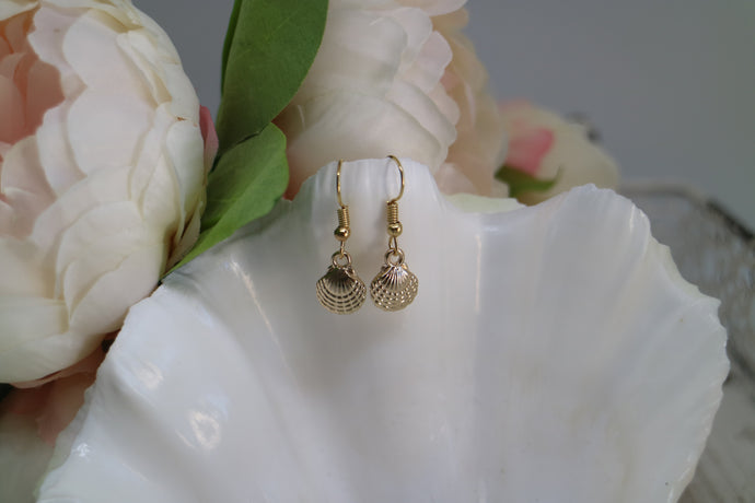 Gold scallop sea shell earrings