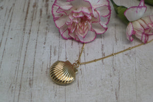 Gold Shell Locket Necklace