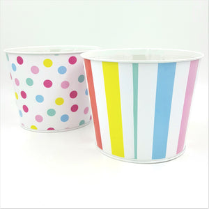 "343955PAS  6.5""T x 5""W Candy Sprinkles Pot  2 /Set"