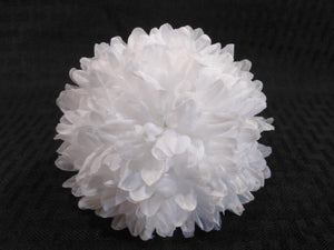 White Homecoming Mums - Multiple Sizes & Layers