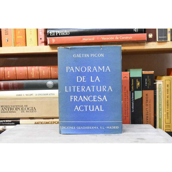 Panorama De La Literatura Francesa Actual - Picon [coyote]