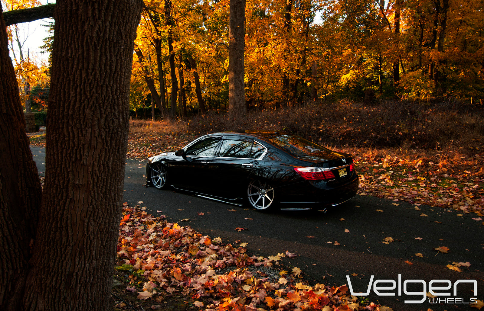 Velgen Wheels VMB8 Honda Accord Bagged