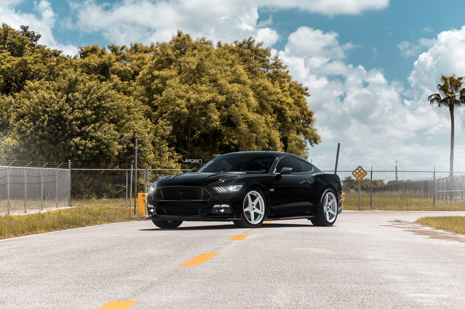black-mustang-classic5-silver-1