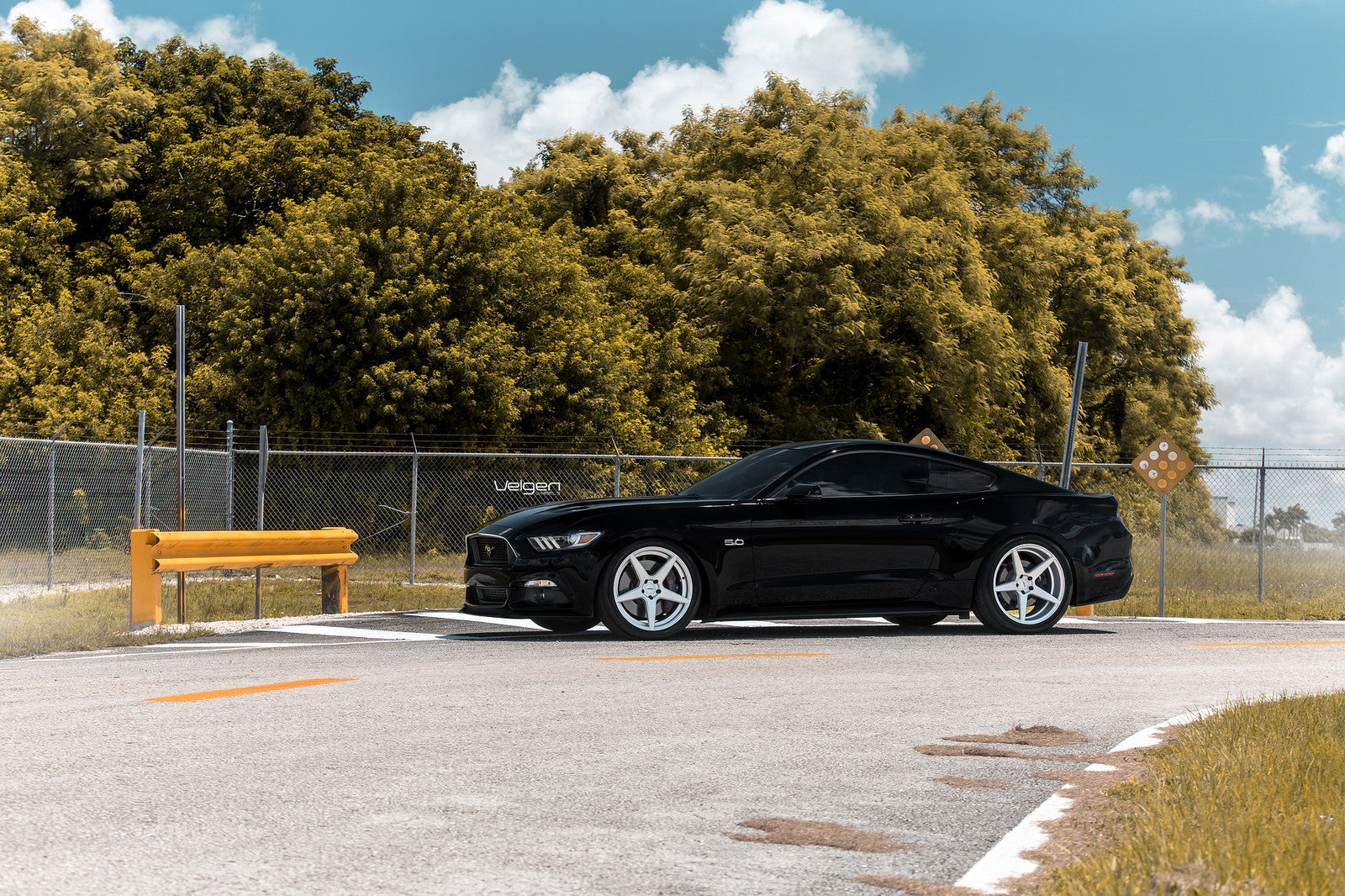 black-mustang-classic5-silver-3