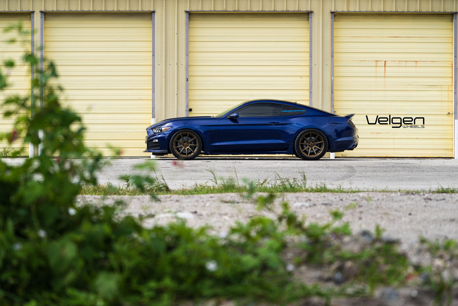 blue-mustang-on-vmb9-bronze-2