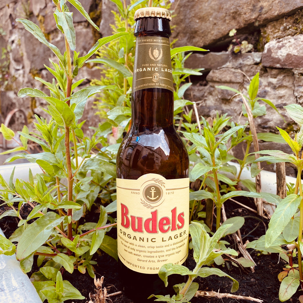 Budels Organic Lager 330ml