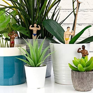 Mini Hunk Planters - The Gay Bar Shop