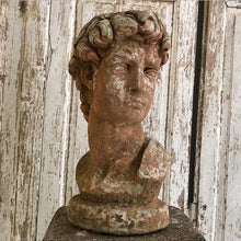 Load image into Gallery viewer, Gorgeous Bust Of David