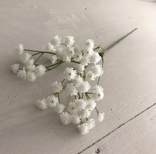 Load image into Gallery viewer, White Gypsophila Stems