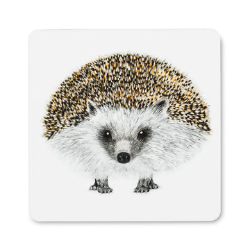 HENRY HEDGEHOG COASTER
