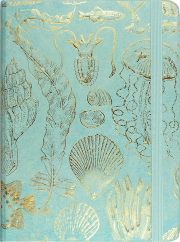 JOURNAL - SEALIFE SKETCHES