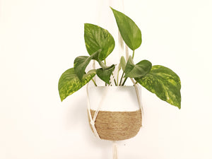 Plant Hanger with Gathering Knot Base