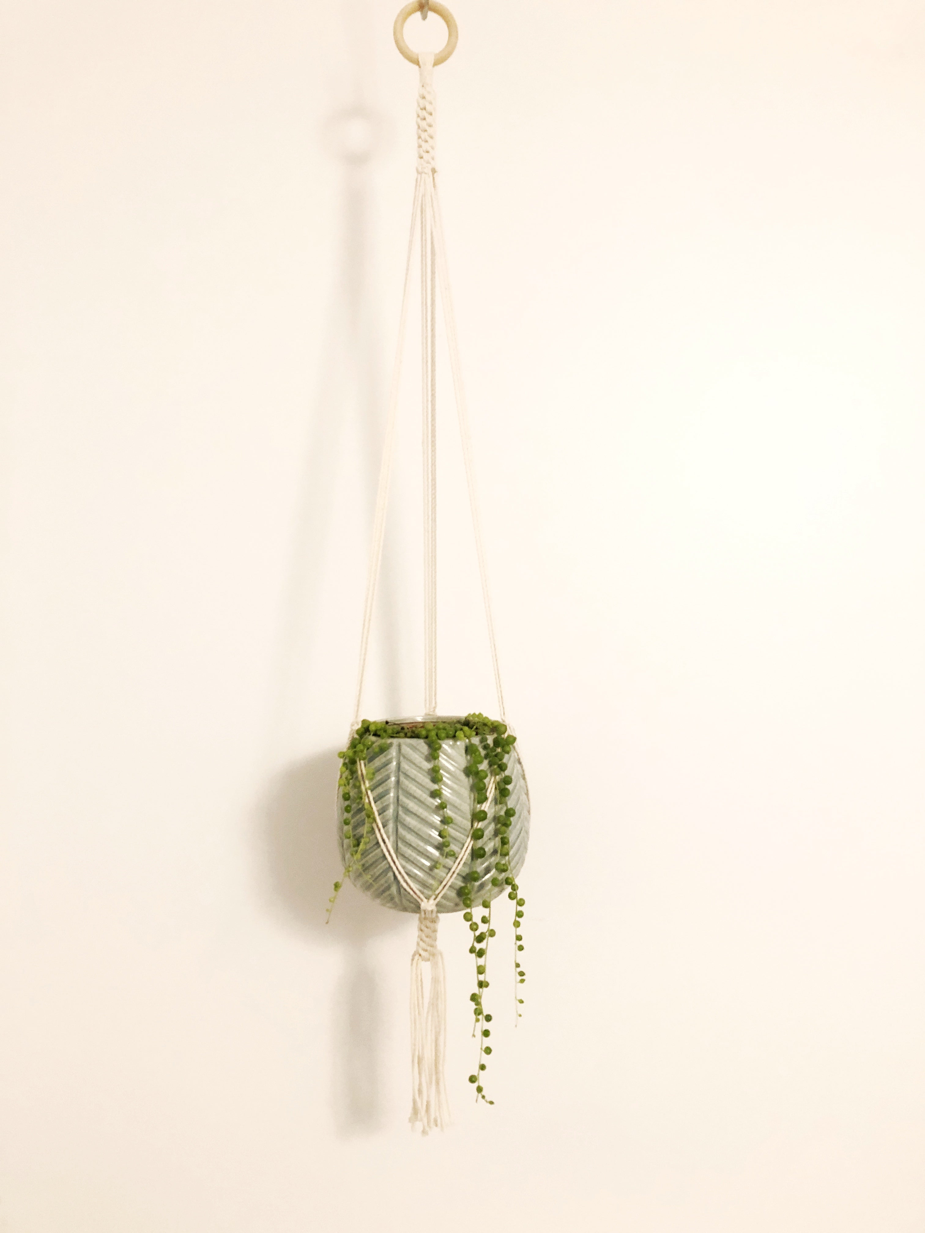 Plant Hanger with Crown Knot Base