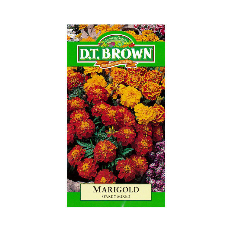 Buy DT Brown Marigold Sparky Mixed Seeds | Dollars and Sense