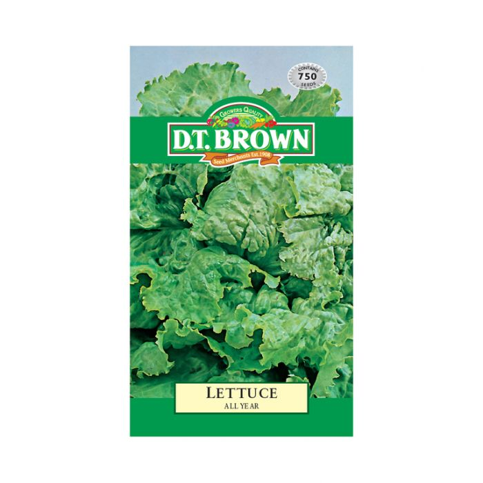 Buy DT Brown Lettuce All Year Seeds | Dollars and Sense