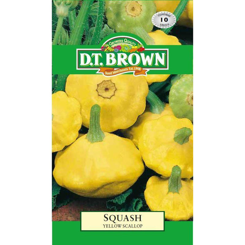 Buy DT Brown Squash Yellow Scallop Seeds | Dollars and Sense
