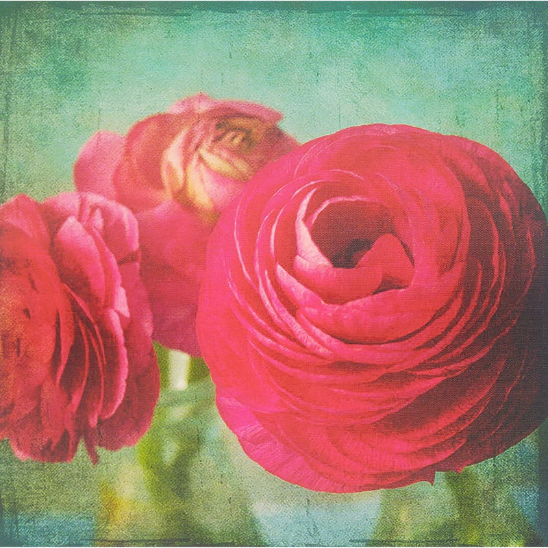Canvas Prints 40x40cm Red Roses