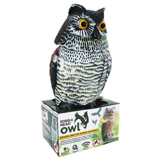 Outdoor Owl Bobble Head