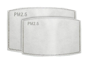 PM 2.5 FILTERS - 10 FILTERS