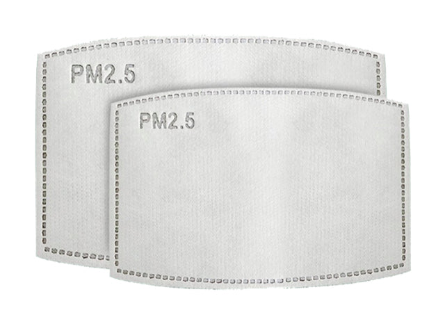 PM 2.5 FILTERS - 1 FILTER