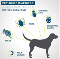 Pro Guard Flea & Tick Collar For Dogs