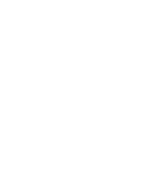 Manny the Frenchie
