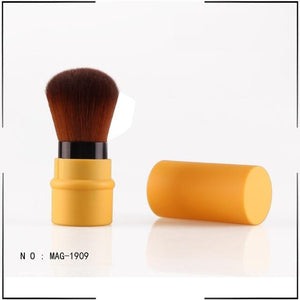 Mini Retractable Brush
