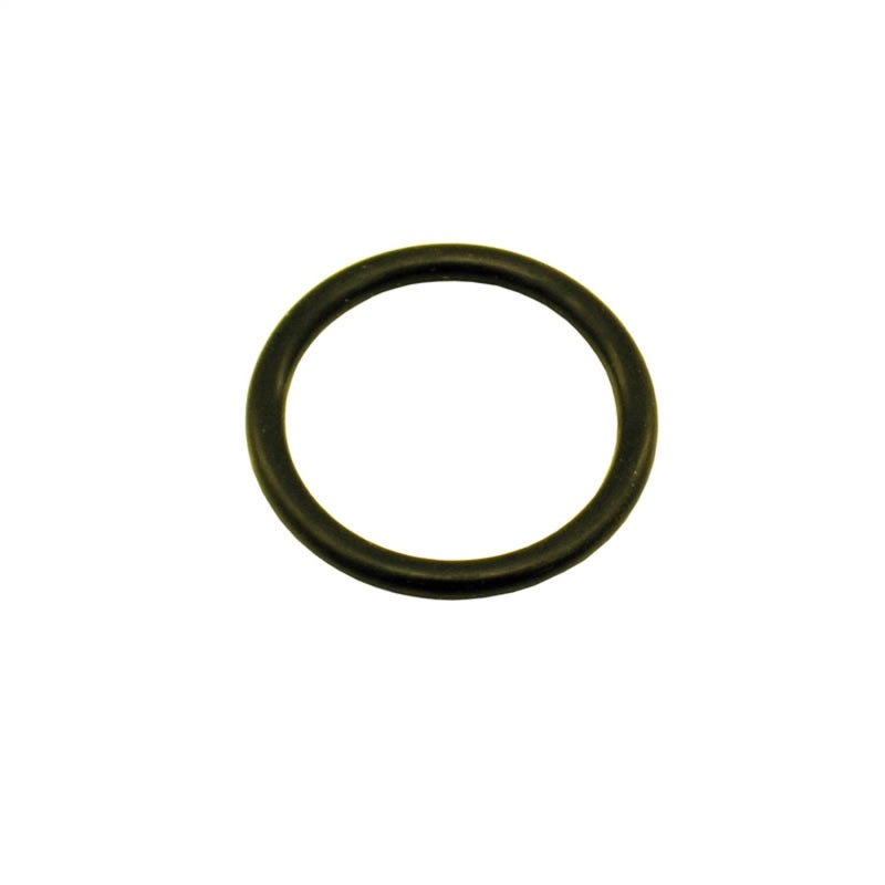 Nitrous Express 5/8 O-Ring for Motorcycle Bottle Valve (Fits 2lb Bottles and Smaller)