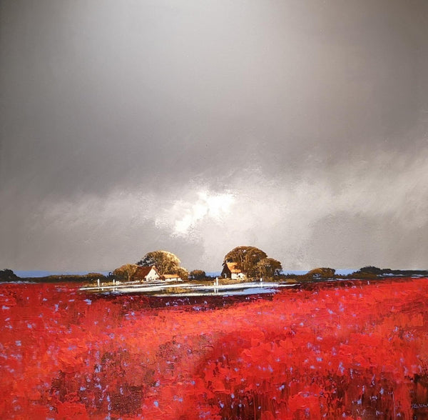 dark sky with red poppies