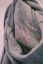 Laden Sie das Bild in den Galerie-Viewer, THE OG HOODIE | SEXY GREY