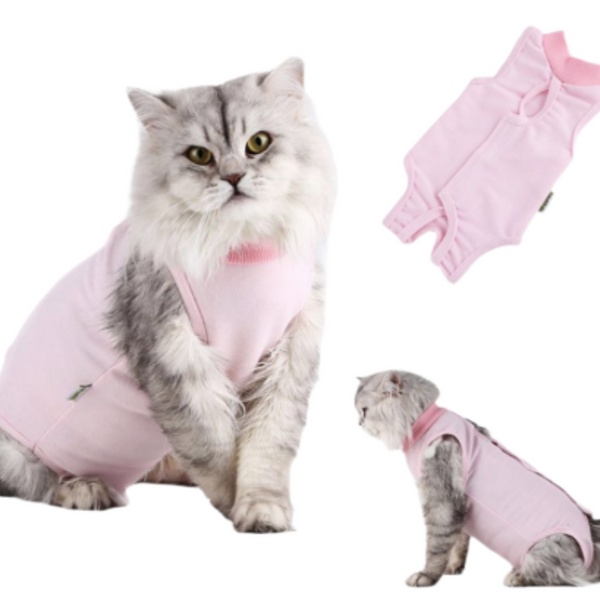 After Surgery Cat Wear: Comfortable cat onesie. The perfect suit for wearing it as a stylish accessory during the cold season or preventing your furry friend from licking their wounds after a sterilisation surgery.