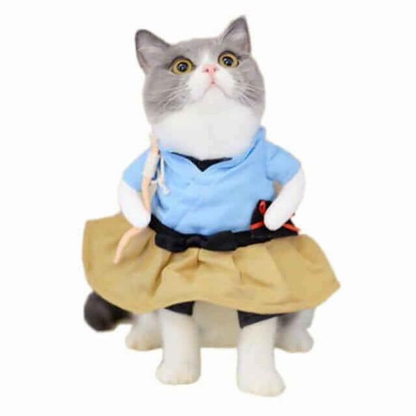 "Looking for some fun clothes for your pet? Say no more. This Japanese, Urashima Taro, suit is perfect for a memorable photoshoot, a special occasion like Halloween or just because ""why not?""."