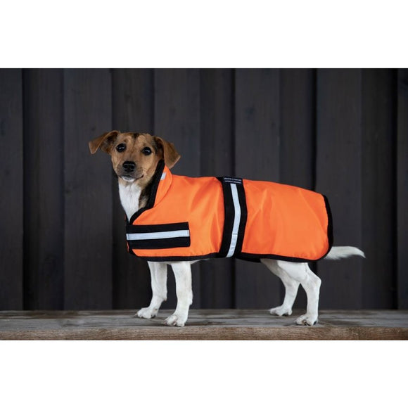 High Vis Dog Coat