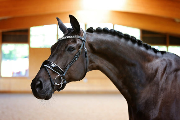 Belle Equestrian Duchess Snaffle Bridle