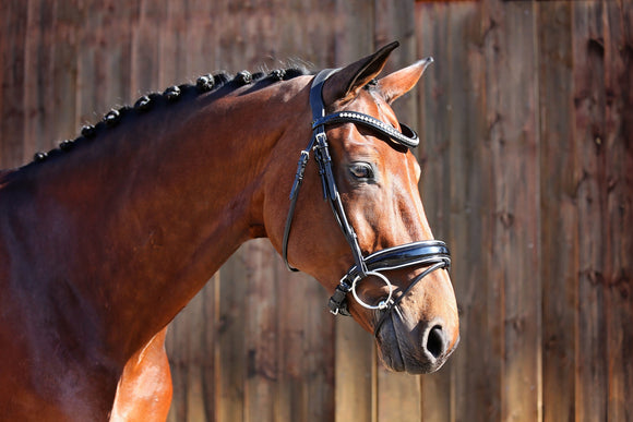 Belle Equestrian Countess Snaffle Bridle