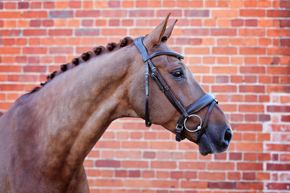 Belle Equestrian Prince Snaffle Bridle