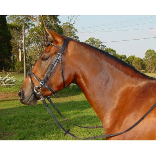 Cant A Hanoverian Bridle With Raised Browband