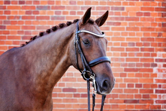 Belle Equestrian Majesty Double Bridle