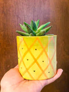 Fruit Planter- Pineapple