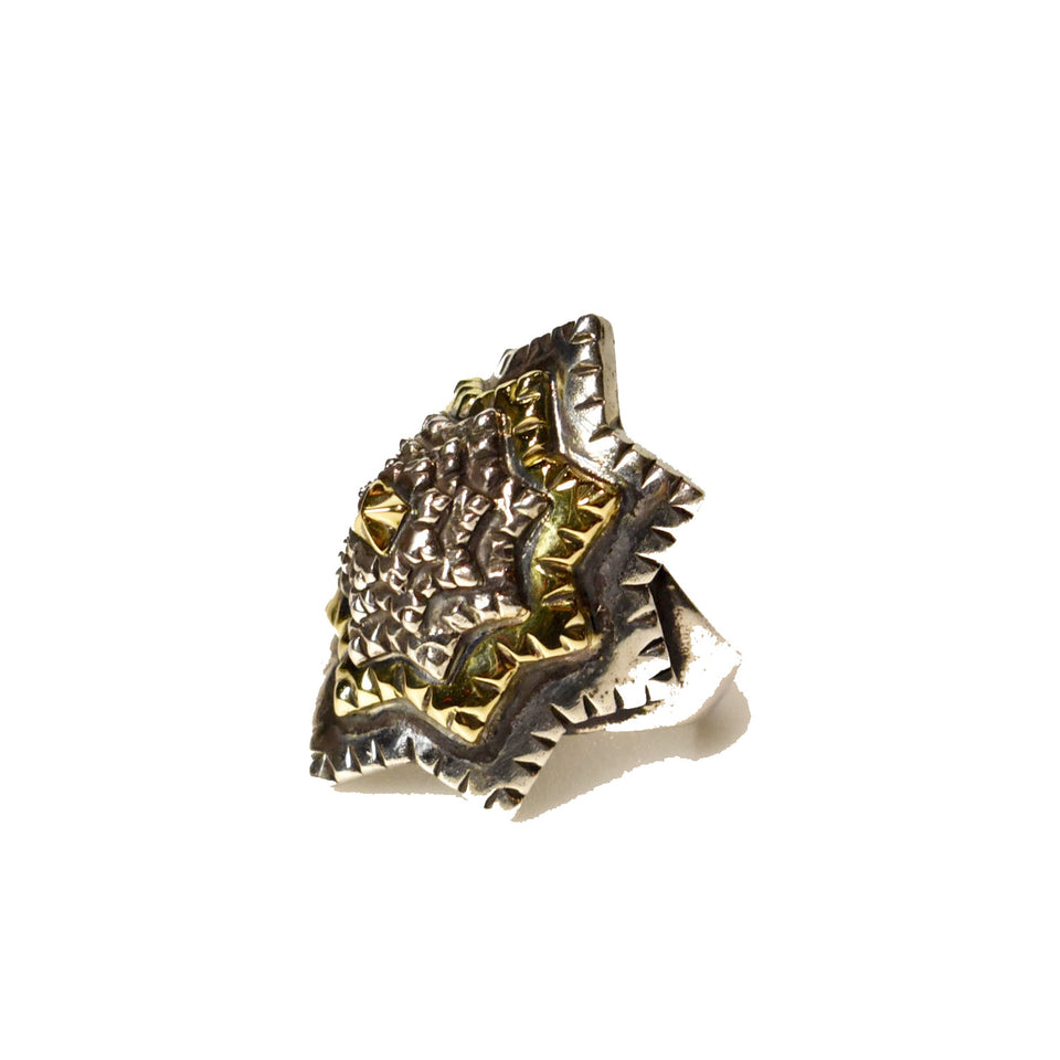 Load image into Gallery viewer, NATURAL INSTINCT STUDS RING