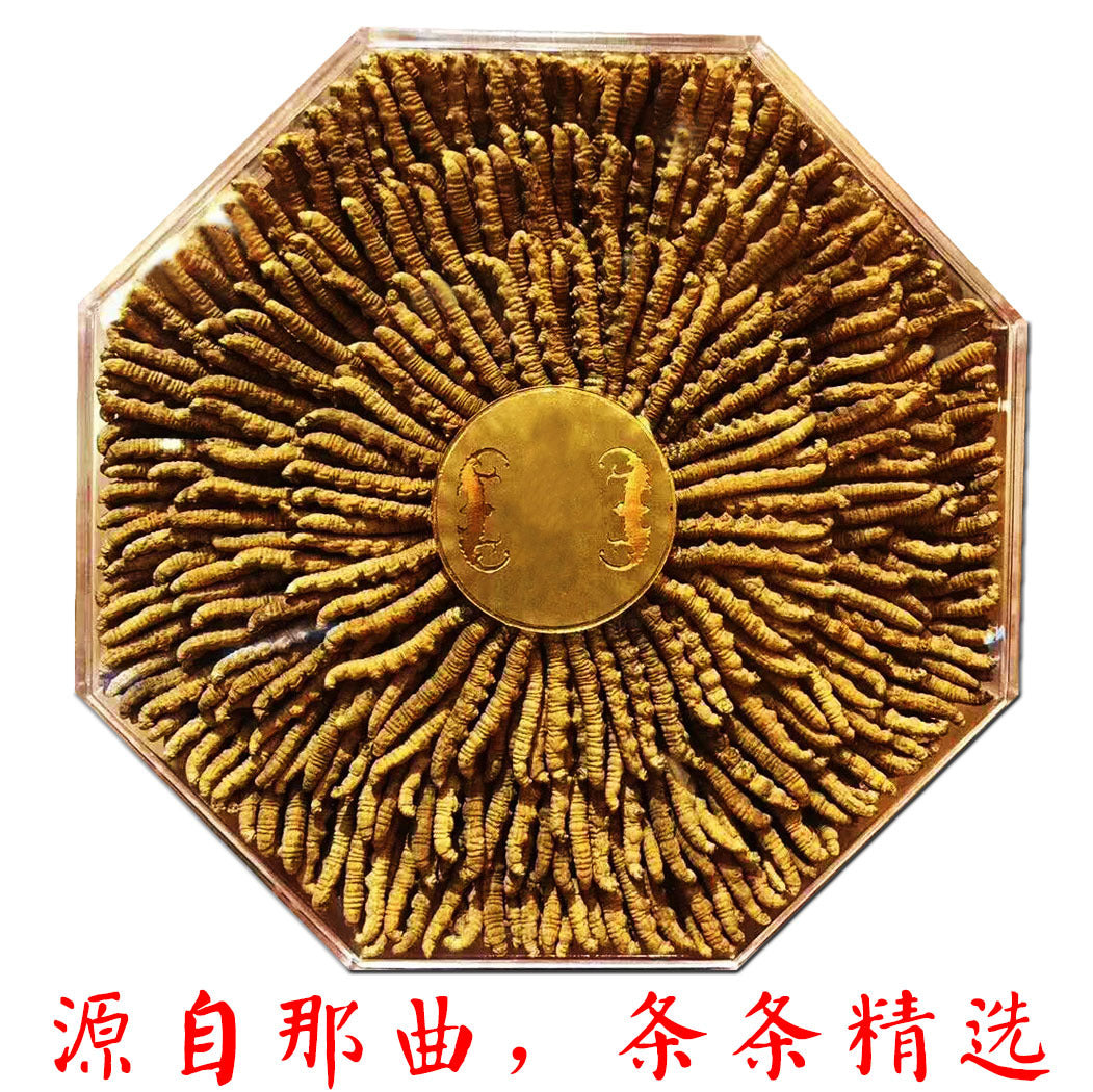 2018 New Yushu Tibetan Area Selected Wild Foot Dry Cordyceps Source Origin Wholesale Self-use / Gifts