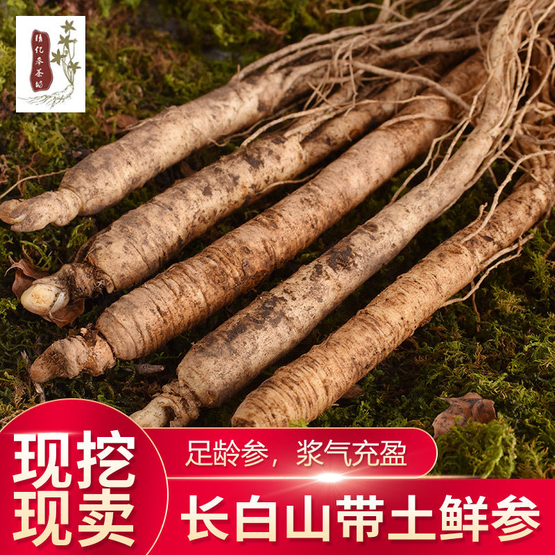 Wholesale Northeast specialties with fresh ginseng 10 grams / 1 yuan Changbai Mountain fresh ginseng soaked wine soup 50