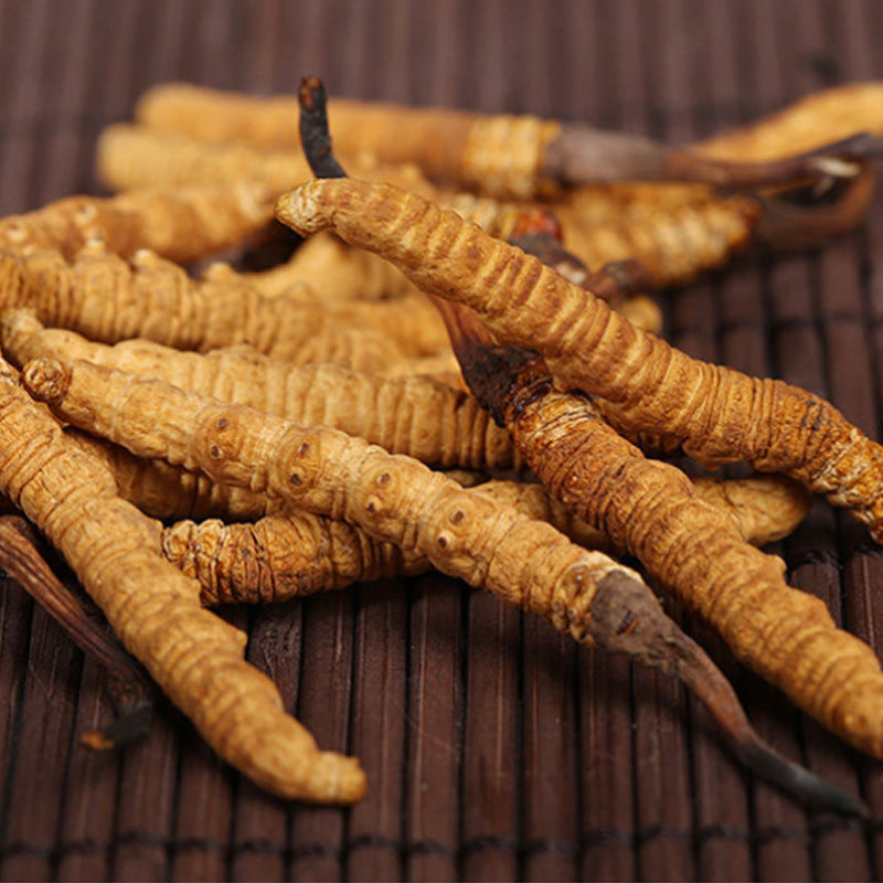 Sichuan wild Cordyceps, Cordyceps sinensis, deep mountain artificial mining, nutrient-rich tonic, a generation